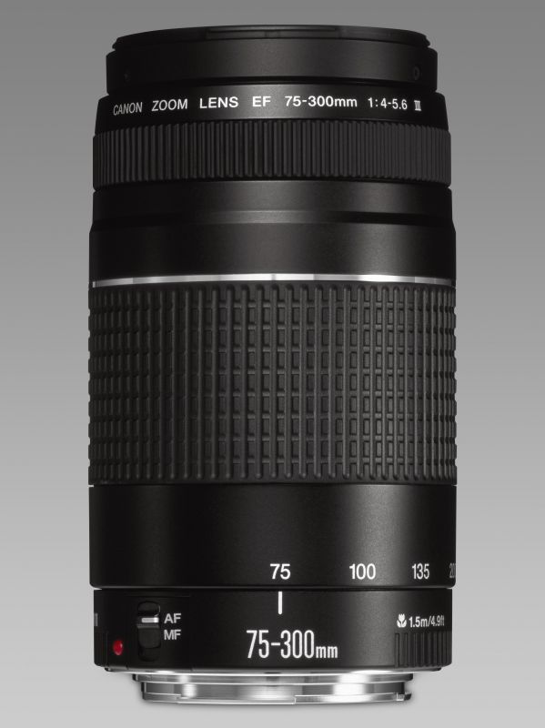 Canon EF 75-300mm / 4.0-5.6 mark III