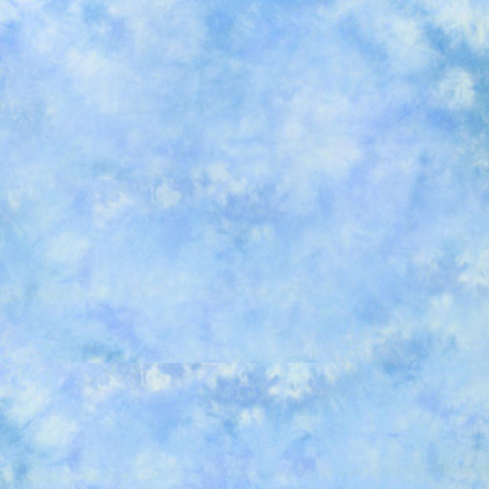 Lastolite Ezycare Maine háttér