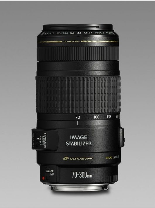 Canon EF 70-300mm / 4-5.6 IS USM