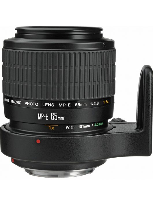 Canon MP-E 65mm / 2.8 (1-5x Macro Photo)