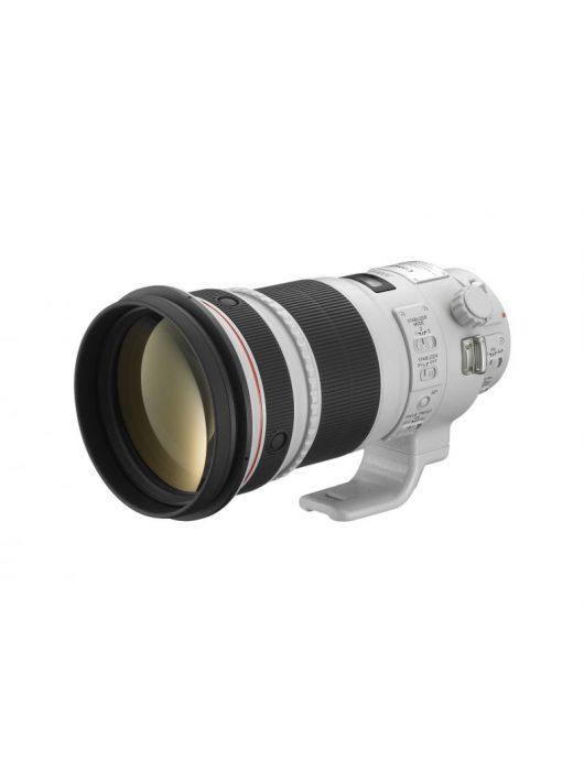 Canon EF 300mm / 2.8 L IS USM mark II (4411B005)