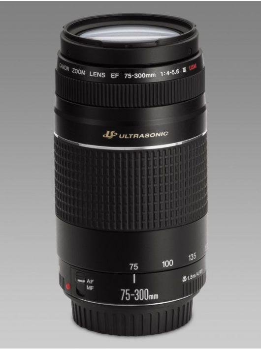 Canon EF 75-300mm / 4-5.6 USM mark III