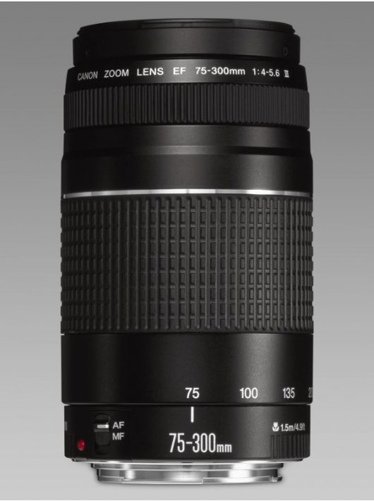 Canon EF 75-300mm / 4-5.6 mark III