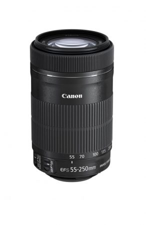 Canon EF-S 55-250mm / 4-5.6 IS STM